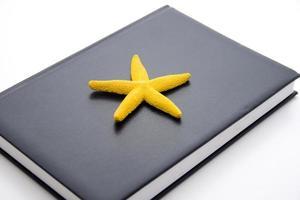 sjöstjärna med anteckningsbok