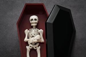 skelett i kistan foto