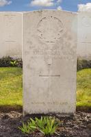 militärkyrkogård 1: a stora världskriget Flandern Belgien foto