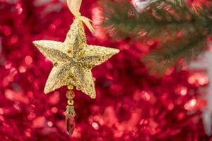 julstjärna prydnad hänga på trädgren foto