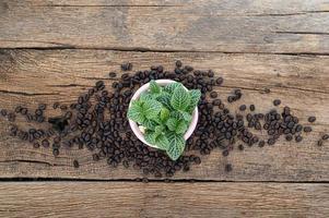 växtkruka och kaffebönor på träbord