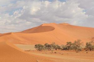 namiböknen i södra Afrika foto