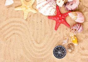 snäckskal och sjöstjärnor med kompass på sand foto