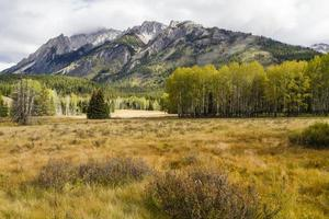 Hillsdale äng i Banff National Park foto