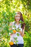 ung vacker kvinna som plockar apelsiner