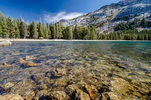 vacker lnascape i Kalifornien, usa foto