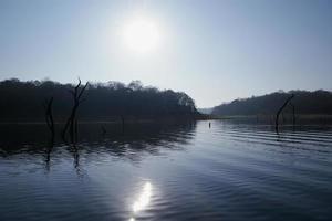sjö, Periyar nationalpark, Kerala, Indien foto
