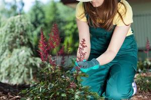 kvinna som bryr sig om blommor