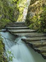 skönheten i plitvice woods, sjöar och vattenfall. foto