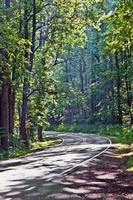 natursköna landsvägen kurvor genom Shenandoah National Park.