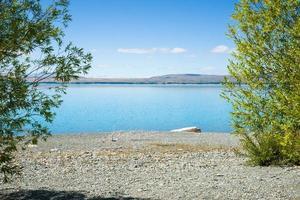 utsikt genom gröna träd över stenig strand av sjön Pukaki. foto