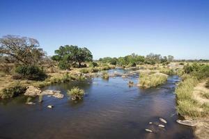 Sabie River i Kruger National Park foto