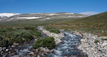 flod i nationalparken Jotunheimen (Oppland, Norge)