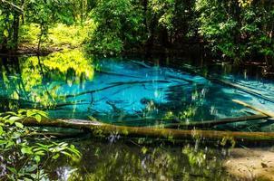 sa nam phut nationalpark i Thailand