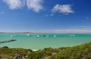 Langebaan lagune - västkustens nationalpark, Sydafrika foto