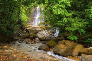 vattenfall och ström i borneos regnskog foto