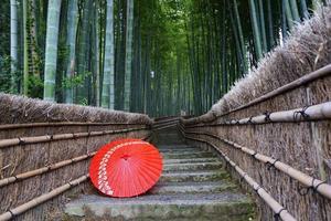 arashiyama kyoto foto