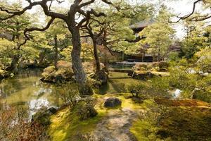 ginkakuji tempel mossig trädgård, kyoto foto