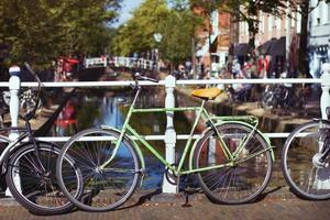 nederländerna foto