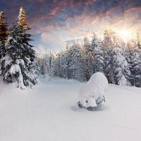 vackert vinterlandskap i bergen