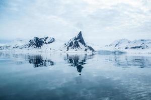 arktisk vår i södra spitsbergen.