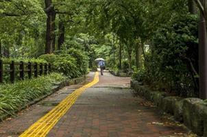 man med paraply på park i tokyo.