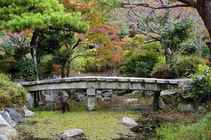 japansk trädgård faller