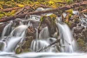 vattenfall över mossa och död ved foto