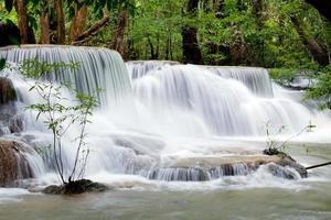 tropiskt vattenfall