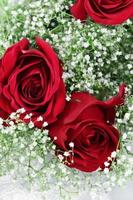 röda rosor och barnens andedräkt