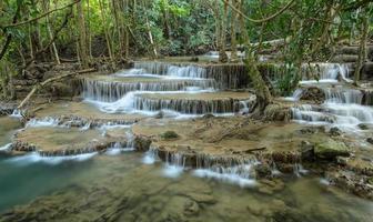 tropisk regnskog vattenfall, thailand foto