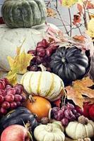 höstens ymnighetshorn foto