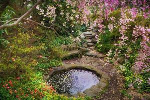 målad trädgård foto