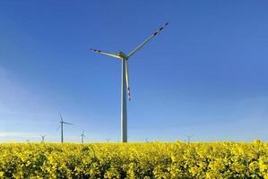 vindkraftverk, grupp av anpassade vindkraftverk för alternativ för elproduktion foto