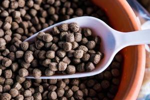 pellets, mat för fisk foto