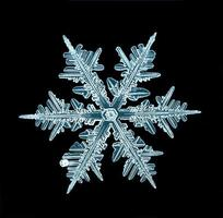 naturlig kristall snöflinga makro