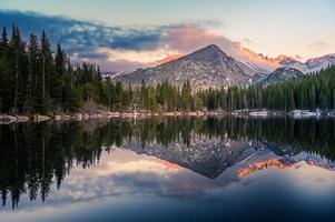 träd som reflekterar i klar sjö foto