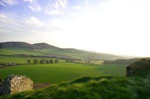 grönt fält i Irland