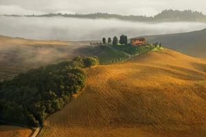 tuscany landskap panorama kullar och äng Italien