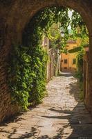 gamla grönskande gator en medeltida toskansk stad.