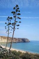 landskap från stranden nära sagres, portugal