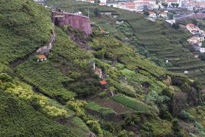 Madeira Island foto