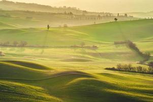 toskanska gröna morgnar och soluppgångar, Italien