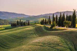 lugnt sommarfält i Toscana