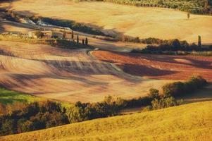 landsbygdens landskap i ljuset av solnedgången