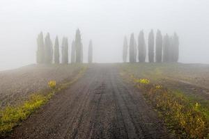 Toscana - landskap panorama kullar och äng toscana Italien