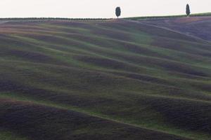 fält i, San Quirico d'Orcia, Toscana, Italien