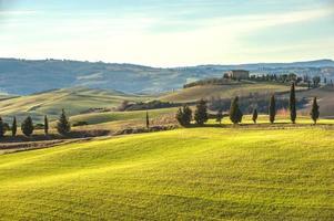 konstnärligt toskanskt landskap med cypresser, vågiga fält och hus
