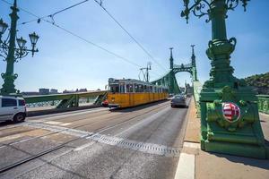 utsikt över frihetsbro över Donau