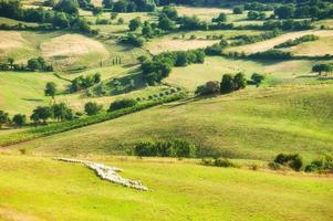 landsbygdens landskap av gröna toskanska, Italien